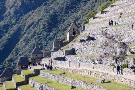 The incas has an intricate agriculture system for the steep hills